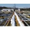 高效低能耗养殖污水深度处理 养殖污水处理工程